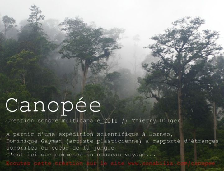 flyer_canopee